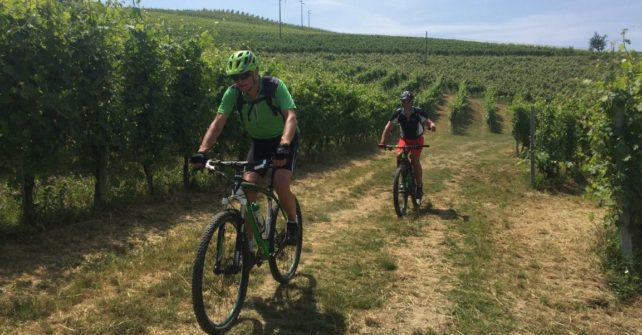 FOOD & E-BIKE IN MONFERRATO